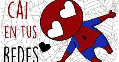 El verdadero amor de Spider-Man
